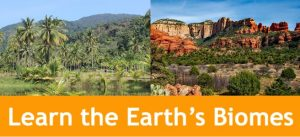 Cover for An Easy Way to Learn Earth's Biomes showing photos of the desert and a rainforest.