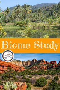 Pinnable Cover for An Easy Way to Learn Earth's Biomes showing photos of the desert and a rainforest.