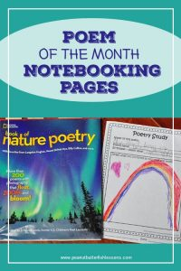 Cover for Blog Post about Poem of the Month Study