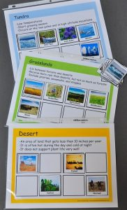 Check out these biome sorting mats to help kids learn the animals, plants, and other vocabulary that belong to each biome.