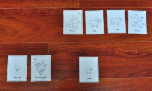 Download these animal matching cards to learn gender, young, and group names.