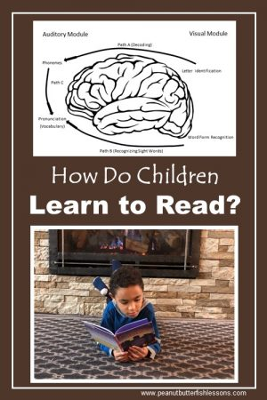 Find out how children learn to read.