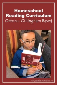 Our Favorite Reading Curriculum for Homeschooling