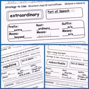 Worksheets showing vocabulary words broken down into prefixes, roots, and suffixes