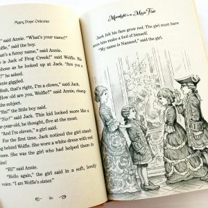 Open page of Magic Tree House book showing illustration