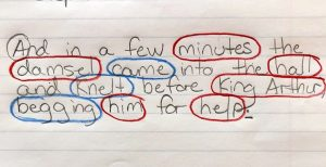 Sentences with nouns circled in red and verbs circled in blue.