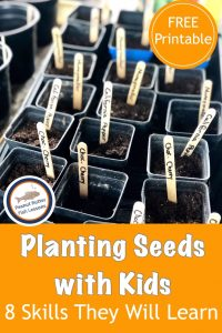 Pinnable cover for blog post Planting Seeds with Kids: 8 Skills They Will learn