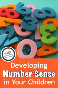 Pinnable cover for post Developing Number Sense in Your Children