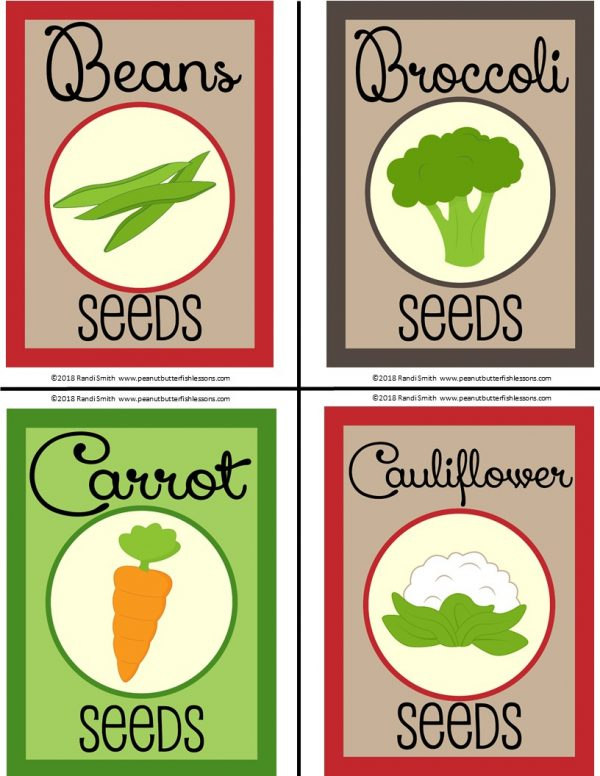 Front of seed packets: beans, broccoli, carrot, cauliflower