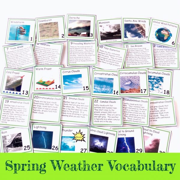 Fronts and backs of one month of spring weather vocabulary cards.