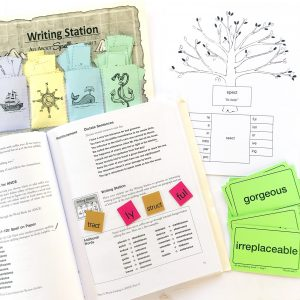 Book, flashcards, letter tiles and other learning materials from All About Spelling 7