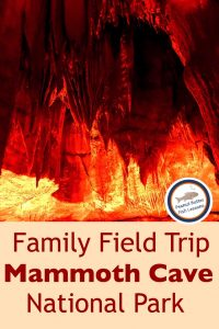Pinnable cover for blog post Family Field Trip: Mammoth Cave National Park