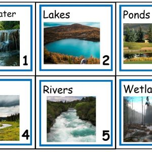 Fresh Water Vocabulary Concept of the Day Cards