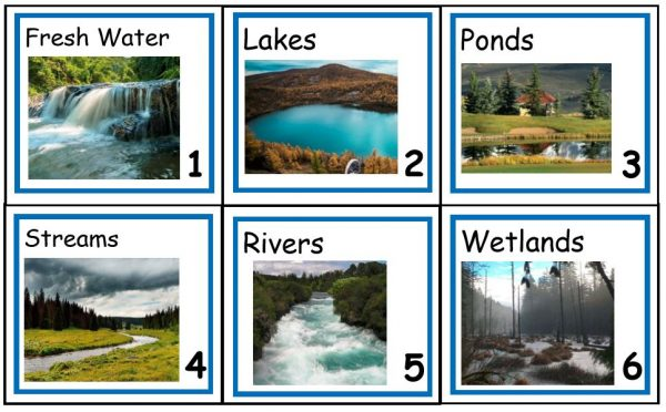 Six vocabulary words with pictures on separate cards.