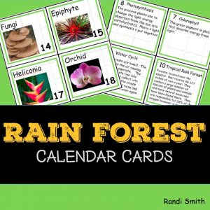 Cover for the Rainforest Calendar Cards showing front and back of four cards.