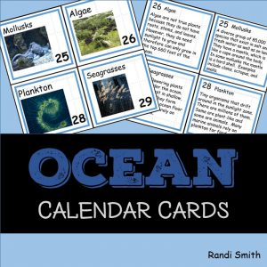 Ocean Vocabulary Concept of the Day Cards