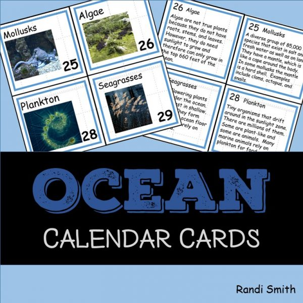 Cover for Ocean Vocabulary Concept of the Day Cards