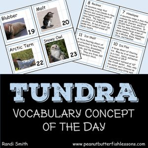 Cover for product, Tundra Vocabulary Concept of the Day Cards