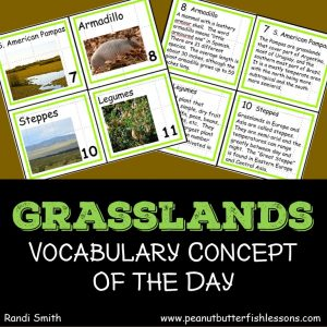 Cover for product, Grassland Vocabulary Concept of the Day Cards.