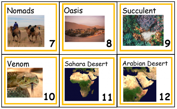 Front of Desert Vocabulary Cards showing photos for six cards.