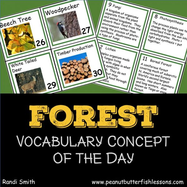 Product cover for Forest Vocabulary Concept of the Day Cards.