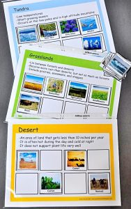 Sorting mats for Tundra, Grasslands, and Desert with some matching pictures.