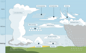 Drawing of different clouds at the correct heights with labels.