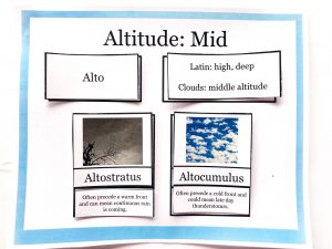 Printed paper mat with the title, Altitude: Mid and cards that match the Latin name and meaning and clouds that occur at the middle latitude.