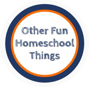 Graphic that says Other Fun Homeschool Things