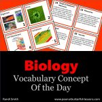 Cover for Biology Cards Vocabulary Cards showing pictures of front and back of some cards and title of the product.