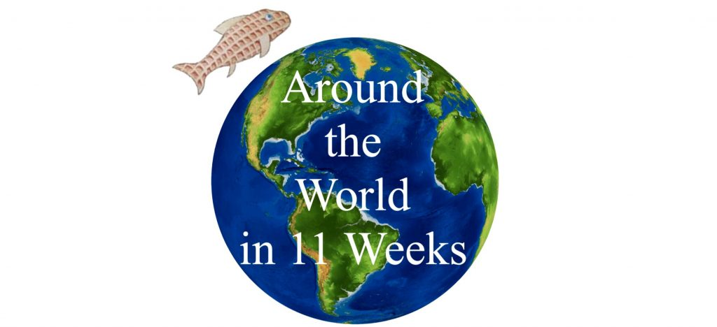 "PIcture of a earth with text saying ""Around the World in 11 Weeks"" and a fish above it."