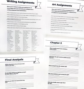 Four printable black and white pages from Anne of Green Gable Study